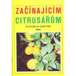 Kodytek, S.: Začínajícím citrusářům