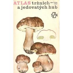 Smotalcha-Malý: Atlas tržních a jedovatých hub