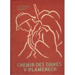 Gaudy, G.: Chemin des Dames v plamenech