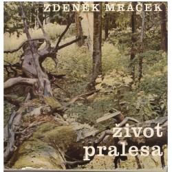 Mráček, Z.: Život pralesa