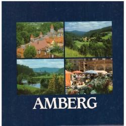 Meckl, R., Moser, G.: Amberg