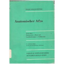 Toldt, C., Hochstetter, F.: Anatomischer Atlas